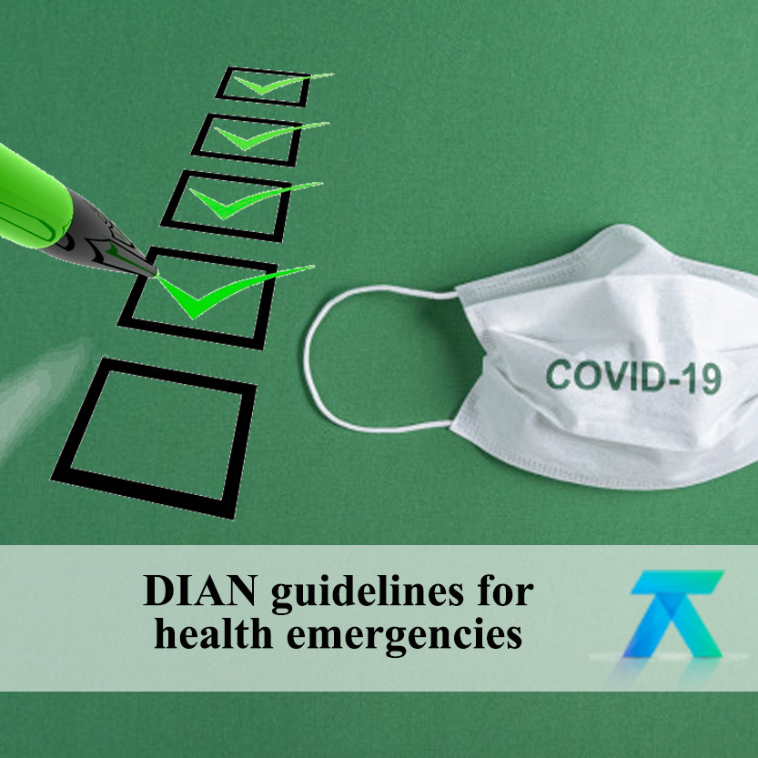 DIAN guidelines for service provision