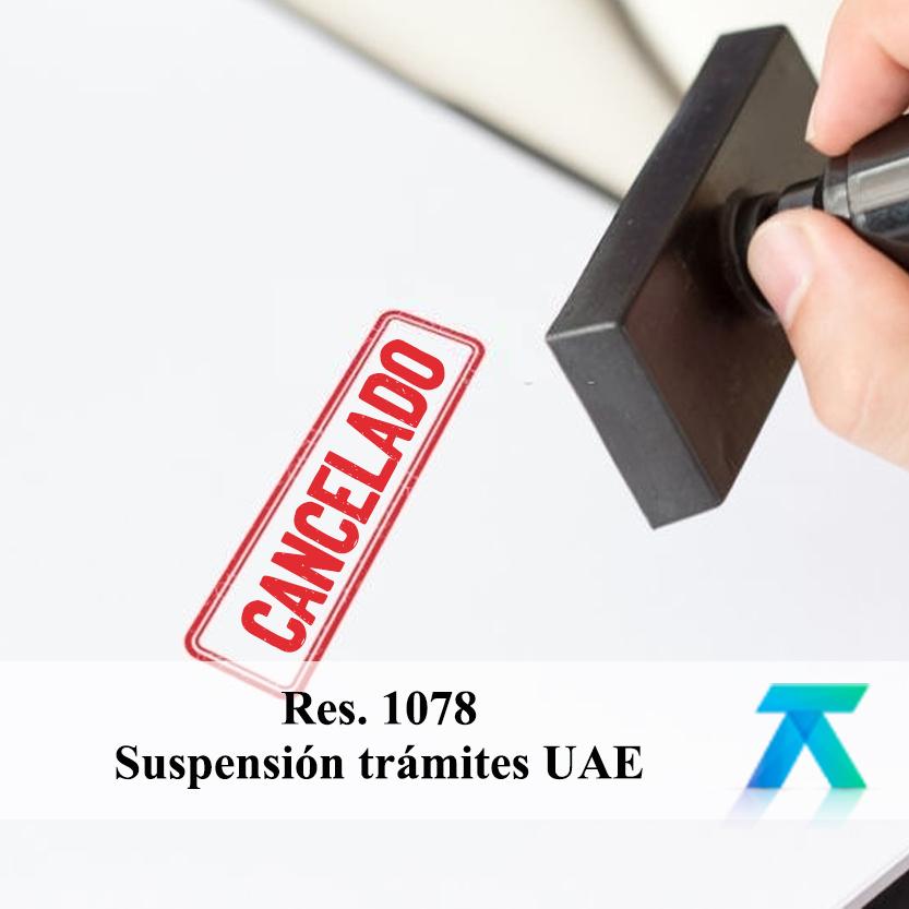 Resolución 1078